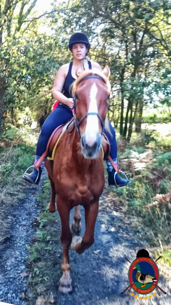 rutas-a-caballo_clases-de-equitacion_hipica-la-coruna_os-parrulos_caballos_r11