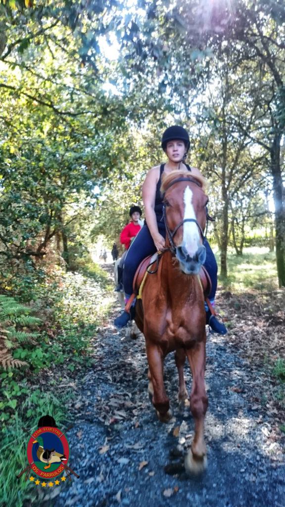 rutas-a-caballo_clases-de-equitacion_hipica-la-coruna_os-parrulos_caballos_r12