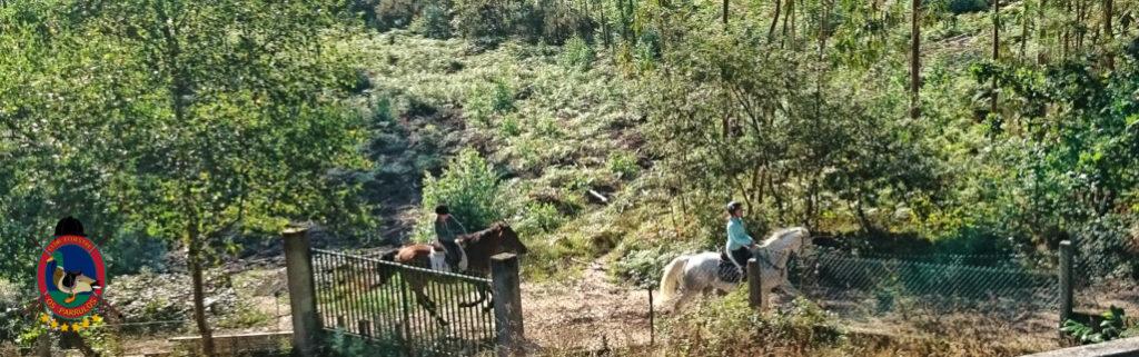 rutas-a-caballo_clases-de-equitacion_hipica-la-coruna_os-parrulos_caballos_r15