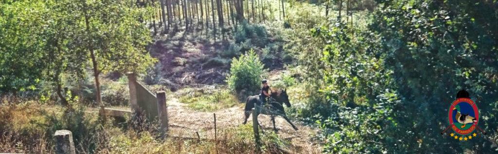 rutas-a-caballo_clases-de-equitacion_hipica-la-coruna_os-parrulos_caballos_r16