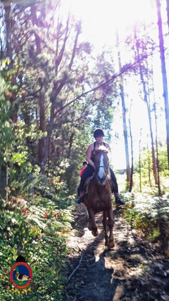 rutas-a-caballo_clases-de-equitacion_hipica-la-coruna_os-parrulos_caballos_r18