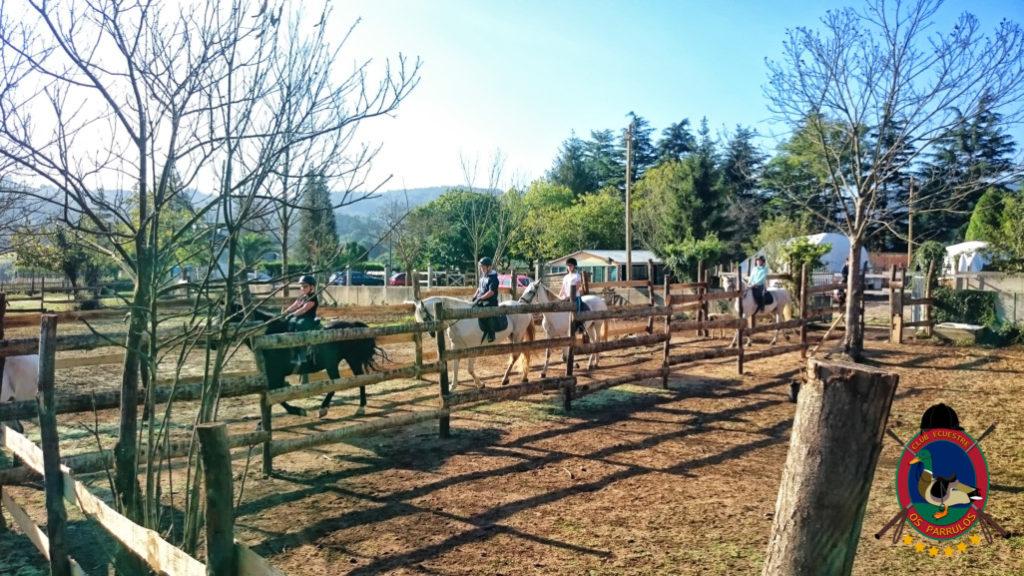 rutas-a-caballo_clases-de-equitacion_hipica-la-coruna_os-parrulos_caballos_r2
