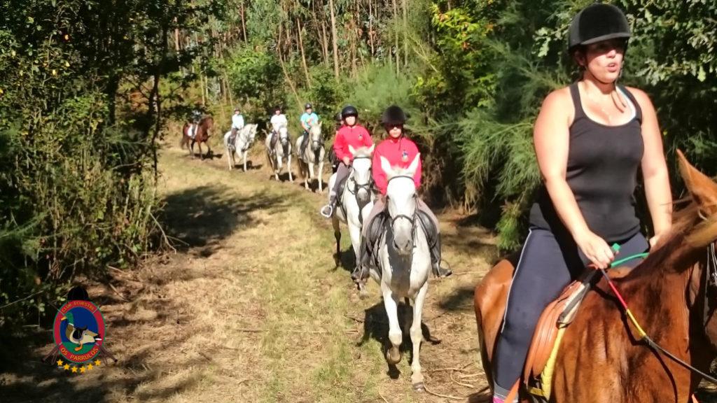 rutas-a-caballo_clases-de-equitacion_hipica-la-coruna_os-parrulos_caballos_r25