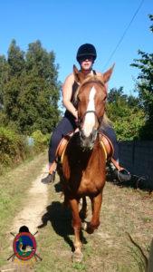 rutas-a-caballo_clases-de-equitacion_hipica-la-coruna_os-parrulos_caballos_r28