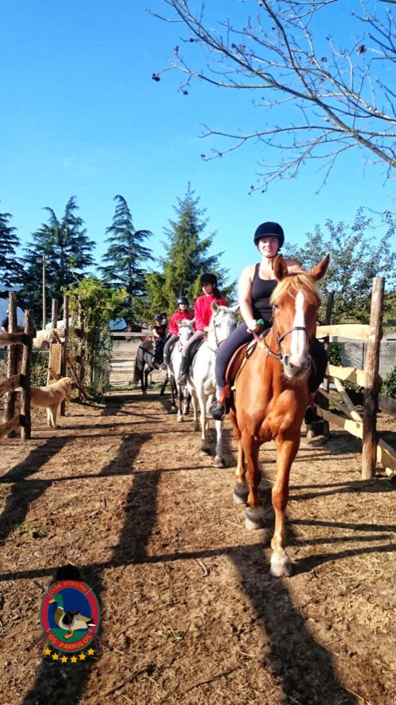 rutas-a-caballo_clases-de-equitacion_hipica-la-coruna_os-parrulos_caballos_r3