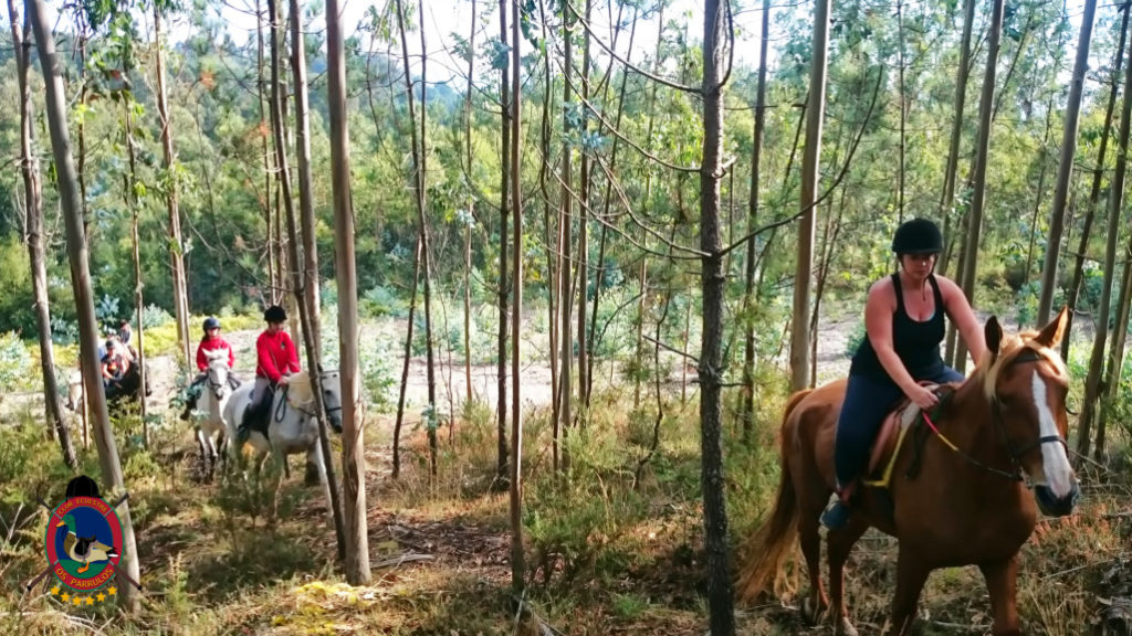 rutas-a-caballo_clases-de-equitacion_hipica-la-coruna_os-parrulos_caballos_r6