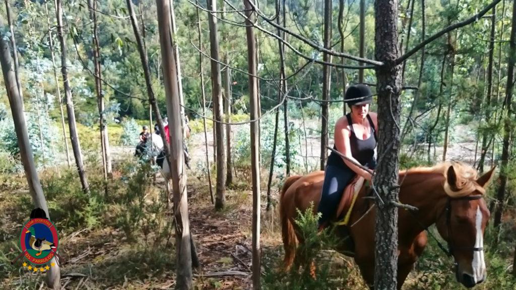 rutas-a-caballo_clases-de-equitacion_hipica-la-coruna_os-parrulos_caballos_r7