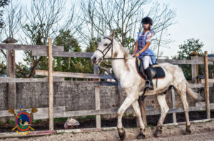 halloweey_os-parrulos_clases-de-equitacion_la-coruna_61