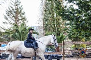 halloweey_os-parrulos_clases-de-equitacion_la-coruna_71