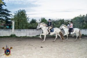 halloweey_os-parrulos_clases-de-equitacion_la-coruna_81
