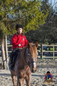 Cases de equitación_A Coruna_Os Parrulos_caballos_carnaval_2