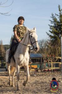 Cases de equitación_A Coruna_Os Parrulos_caballos_carnaval_25