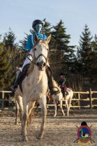 Cases de equitación_A Coruna_Os Parrulos_caballos_carnaval_26