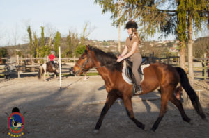Cases de equitación_A Coruna_Os Parrulos_caballos_carnaval_33