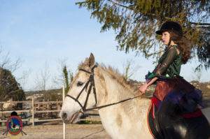 Cases de equitación_A Coruna_Os Parrulos_caballos_carnaval_36