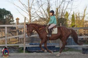 Cases de equitación_A Coruna_Os Parrulos_caballos_carnaval_46