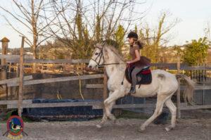 Cases de equitación_A Coruna_Os Parrulos_caballos_carnaval_47