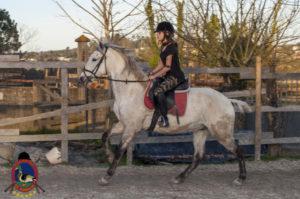 Cases de equitación_A Coruna_Os Parrulos_caballos_carnaval_48