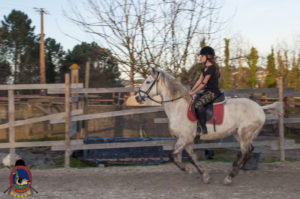 Cases de equitación_A Coruna_Os Parrulos_caballos_carnaval_49