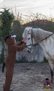 Cases de equitación_A Coruna_Os Parrulos_caballos_carnaval_54