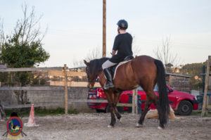 Cases de equitación_A Coruna_Os Parrulos_caballos_carnaval_60