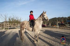 Cases de equitación_A Coruna_Os Parrulos_caballos_carnaval_8