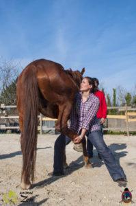 Esther Cano de Vegas_Os Parrulos_Osteopatia equina_animal zen_caballos 102