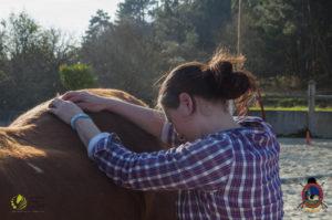 Esther Cano de Vegas_Os Parrulos_Osteopatia equina_animal zen_caballos 106
