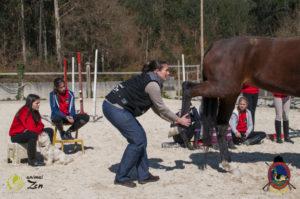 Esther Cano de Vegas_Os Parrulos_Osteopatia equina_animal zen_caballos 14