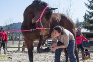 Esther Cano de Vegas_Os Parrulos_Osteopatia equina_animal zen_caballos 32