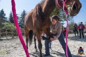 Esther Cano de Vegas_Os Parrulos_Osteopatia equina_animal zen_caballos 46