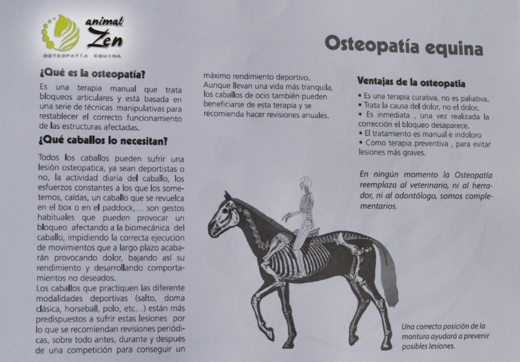 Esther Cano de Vegas_Os Parrulos_Osteopatia equina_animal zen_caballos 6