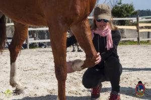 Esther Cano de Vegas_Os Parrulos_Osteopatia equina_animal zen_caballos 69
