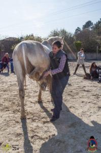 Esther Cano de Vegas_Os Parrulos_Osteopatia equina_animal zen_caballos 89