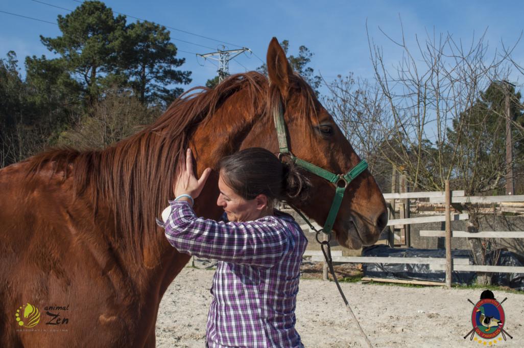 Esther Cano de Vegas_Os Parrulos_Osteopatia equina_animal zen_caballos 91