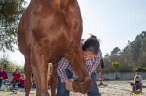 Esther Cano de Vegas_Os Parrulos_Osteopatia equina_animal zen_caballos 95