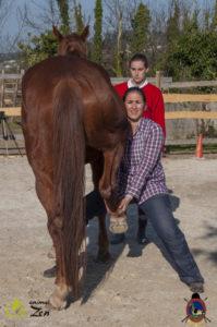 Esther Cano de Vegas_Os Parrulos_Osteopatia equina_animal zen_caballos 97