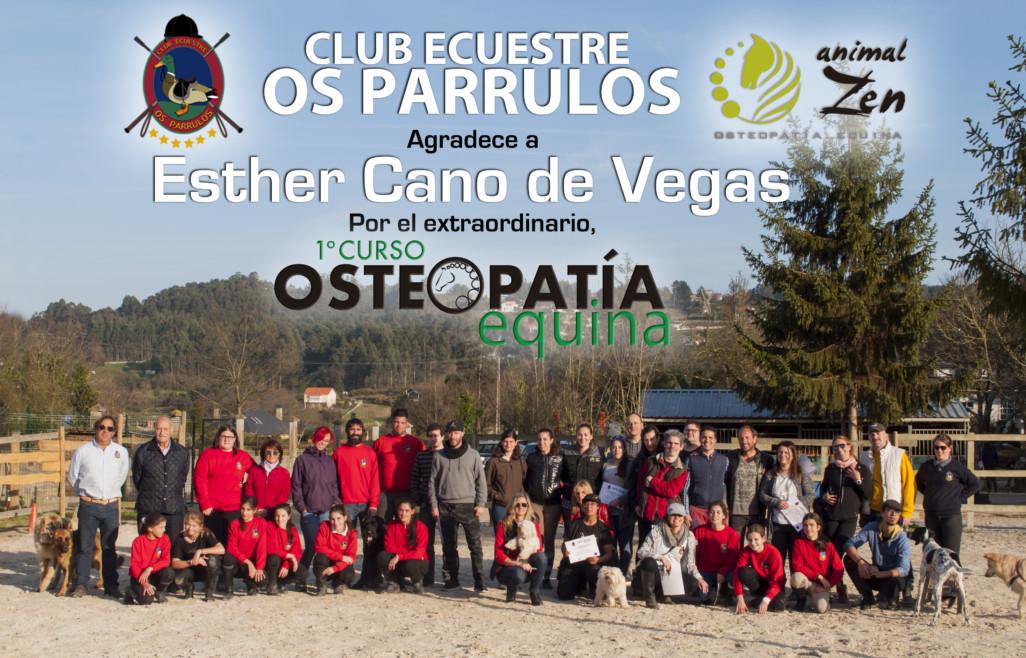 Esther Cano de Vegas_Os Parrulos_Osteopatia equina_caballos 1