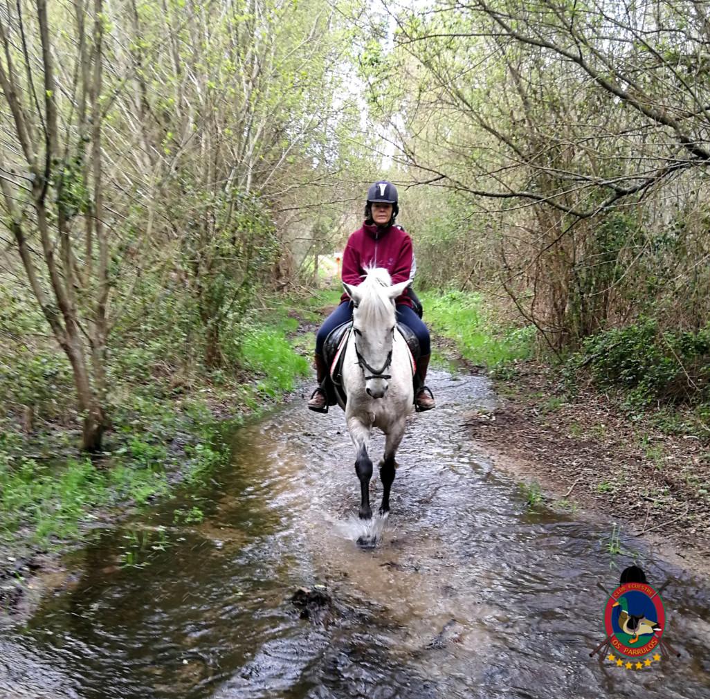 rutas a caballo coruna